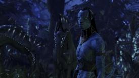 avatar199