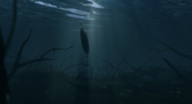 big-fish-003