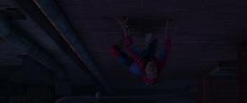 Spiderverse_0498