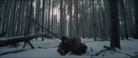 TheRevenant_311