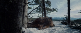 TheRevenant_316