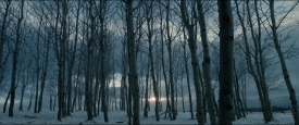 TheRevenant_473